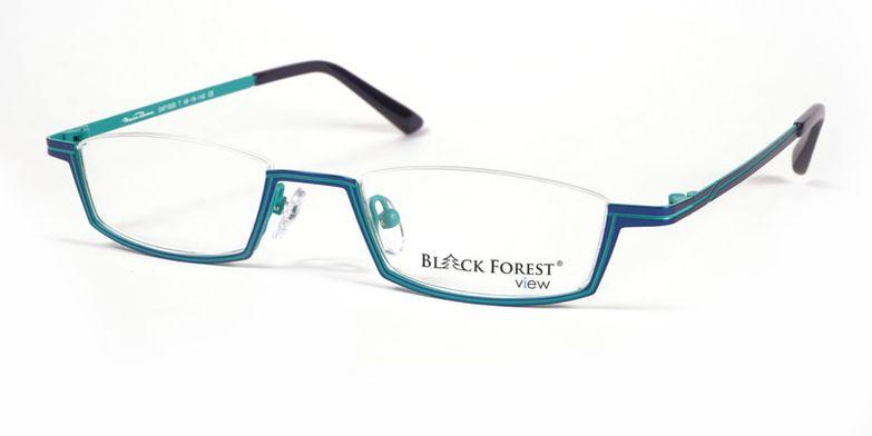 03_04F1000T_BlackForest_view