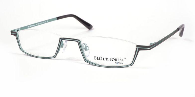 03_04F1000V_BlackForest_view