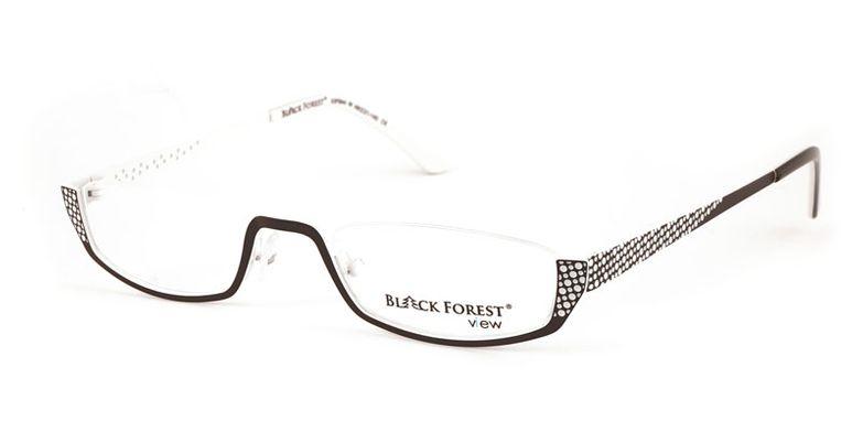 06_53F844W_BlackForest_view