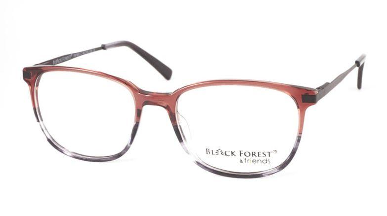 11_79F963C_BlackForest_friends