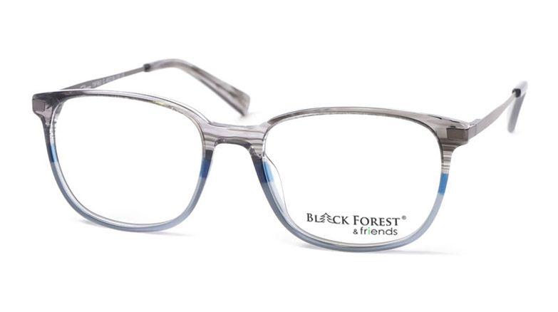 11_79F963G_BlackForest_friends