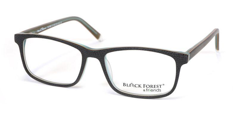 13_79F966S_BlackForest_friends