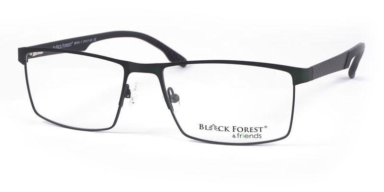 16_BF079V_BlackForest_friends