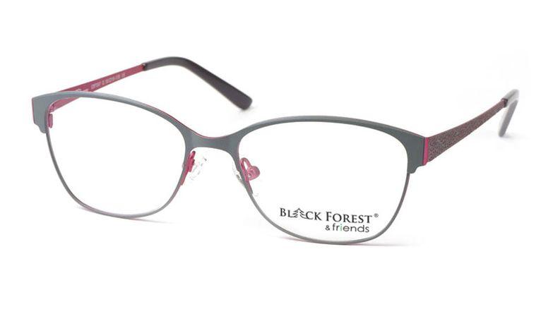 17_03F597G_BlackForest_friends